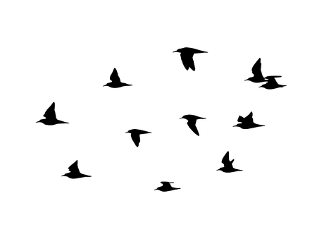 Ruff in the flight. Vector silhouette a flock of birds. Иллюстрация