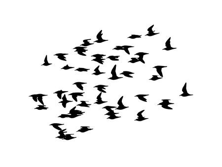 Ruff in the flight. Vector silhouette a flock of birds. Illustration