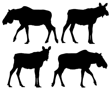 Moose silhouette set. Vector collection for design.
