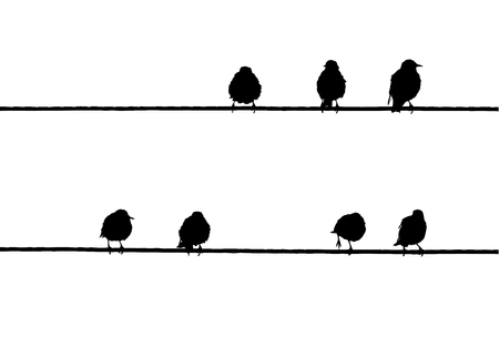 Common Starlings on the power line silhouette. Иллюстрация