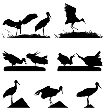 White Storks on the nest silhouette set.