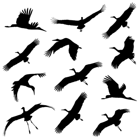 White stork in the flight silhouettes. Иллюстрация