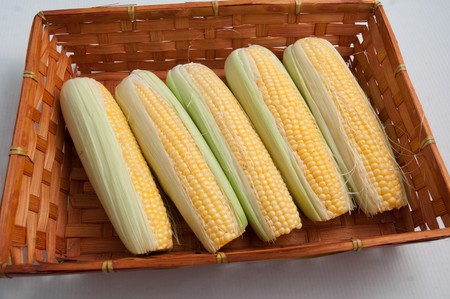Close-up of a basket of fresh corn on cob. photo
