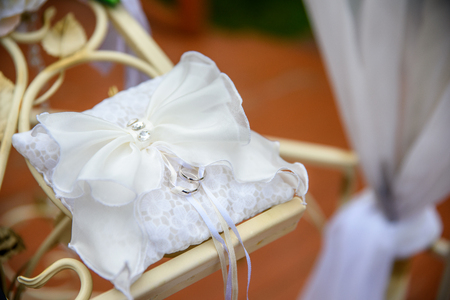 wedding rings on a decorative pillow on the nature.