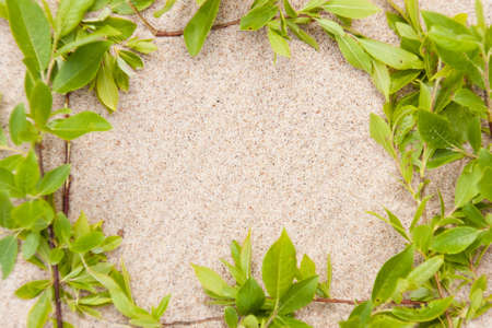 Framework from green leaves against sand. (close up)