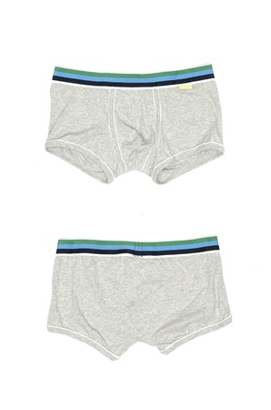 briefs: gray mens briefs isolated on a white