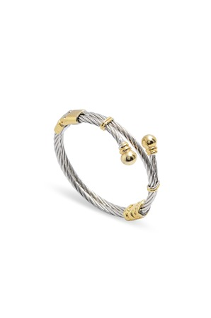 accents: silver bracelet with gold accents on a white background