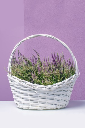heather: Basket with flowers ,heather