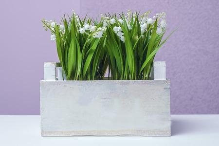 bell flowers in a pot