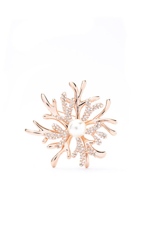 broach: snowflakes  brooch   on a white background Stock Photo