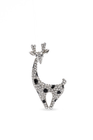 brooch: giraffe brooch on a white background Stock Photo