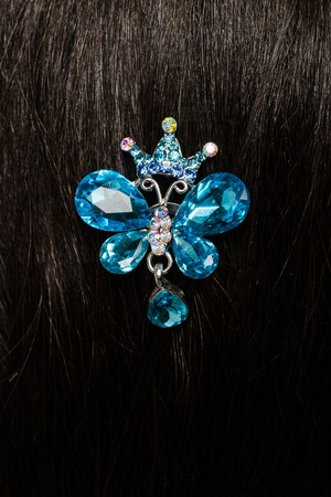 hairpin: hairpin in the hair
