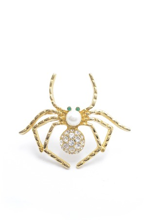 luxe: gold spider brooch  with pearl on white background