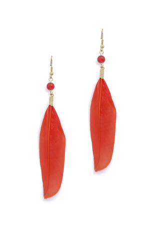 dearness: earrings with red feathers on a white background