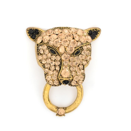 brooch: leopard brooch isolated on white