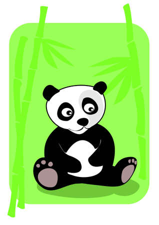 Little panda sitting in bamboo forest