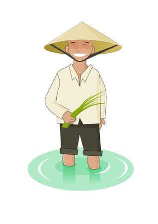 arrozal: Hombre Vietnamise con arroz en sus manos Vectores
