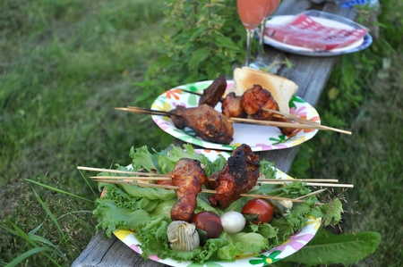 Picnic of two person with grilled broiler, vegetables and drinks. photo