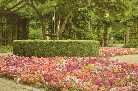 outoors: A lot of blooming flowers and green plants in park in summer day.