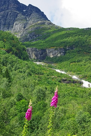 Beautiful summer mountainous landscape of northern Norway photo