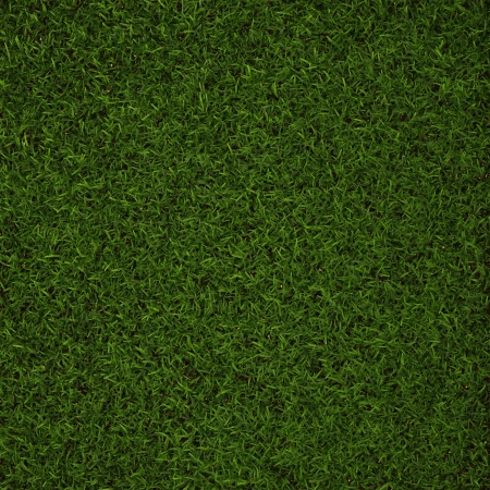 Perfect Grass in  3D