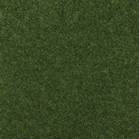 Perfect Grass in gemaakt in 3d software
