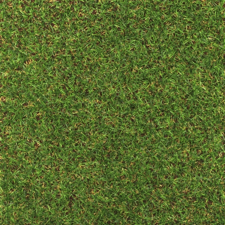 Perfect Grass   made in 3d software Stock Photo