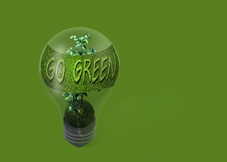 light bulb with text  go green  made in 3d software photo