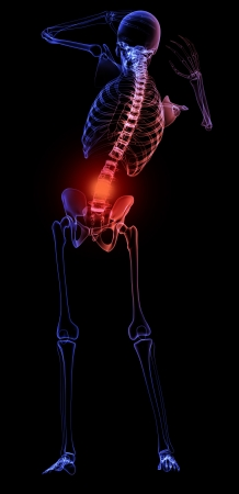 Human skeleton  with a visible pain in the lower back Stock Photo - 20095701