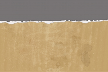 divide: Horizontal  ripped paper for background made in 2d software Stock Photo