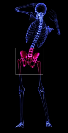 Painful hips made in 3d software photo