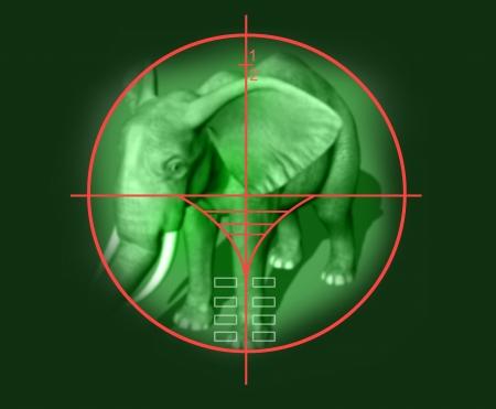 viewfinder: mirino del fucile da cecchino