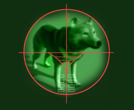 marksman: viewfinder of  sniper rifle