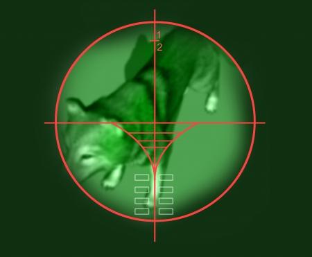 viewfinder: viewfinder of sniper rifle