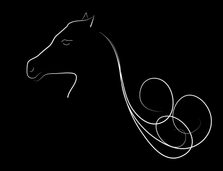 Elegant horse done in black-white a minimal style photo