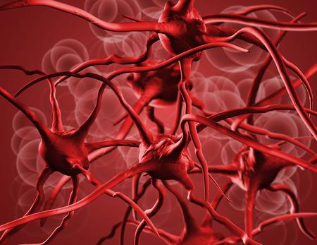 anaemia: Los gl�bulos rojos. Elementos de la sangre de cerca