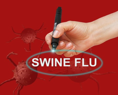 swine flu: writing word SWINE FLU with marker on red background made in 2d software