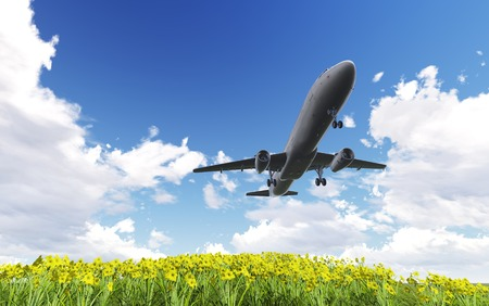 passing over: Airliner passing over flowers  made in 3d software Stock Photo