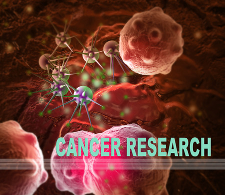 word CANCER RESEARCH  writing on  cancer image    background