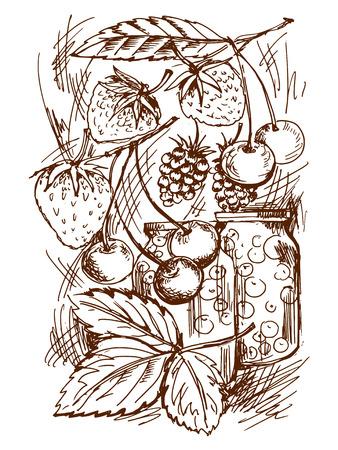 frutta sciroppata: illustrazione schizzo di frutta in scatola