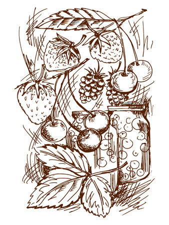canned fruit: sketch illustration of canned fruit