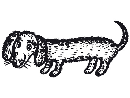 hand drawn, cartoon, sketch illustration of dachshund dog Vector