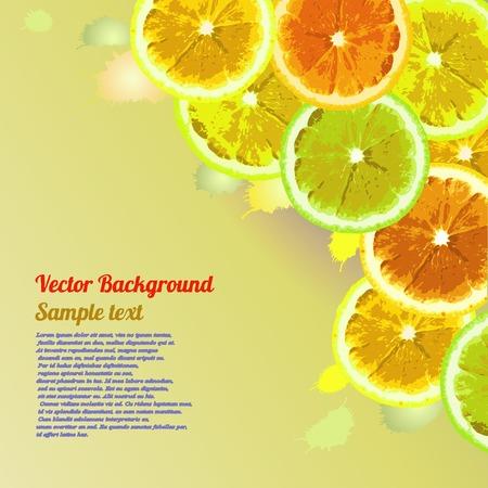 lemon lime: Vector biglietto di auguri, fondo con le fette di immagine di arancia, limone, lime su uno sfondo verde. Pu� essere usato per progettare agrumi pubblicit�. Spazio per il testo. Vettoriali