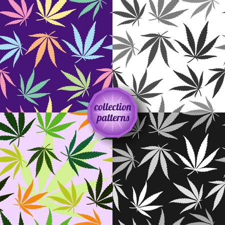 Set of Vector graphics, artistic, stylized  seamless pattern with the image of the leaves of cannabis.