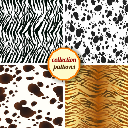 tigress: Set of seamless pattern. Design animal print pattern texture skins Dalmatians, zebra, tiger. Can be used for fabric, wallpaper, wrapping
