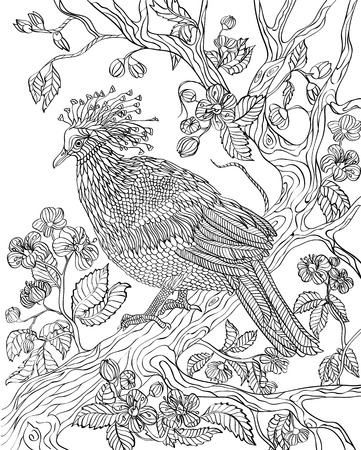 crowned: Hand drawn bird - Crowned dove on a branch of a blossoming tree. Coloring page.