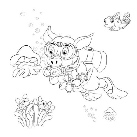 skin diving: Funny cartoon pig diver looking at jellyfish. Coloring book.