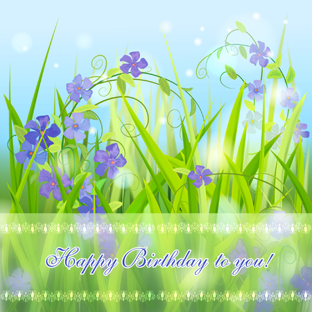 wild grass: Violet Wild  Periwinkle in Grass.  Vector Happy Birthday card. Illustration
