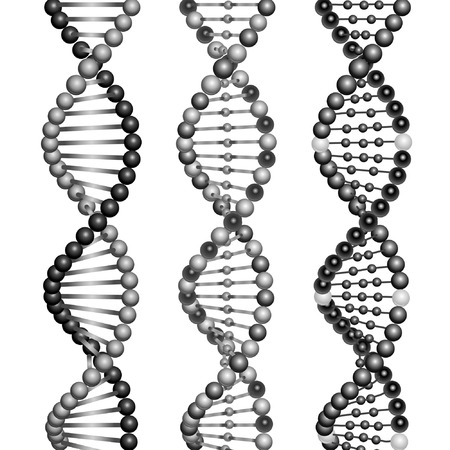 genetic modification: Three types of DNA molecules. Illustration