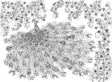 dibujos para colorear: dibujado a mano pájaro - coronado pavo real en una rama de un árbol floreciente. Dibujo para colorear.